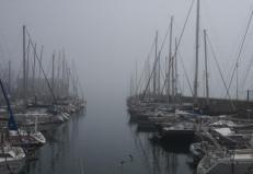 Alltägliches Bild in Porto. Küstennebel